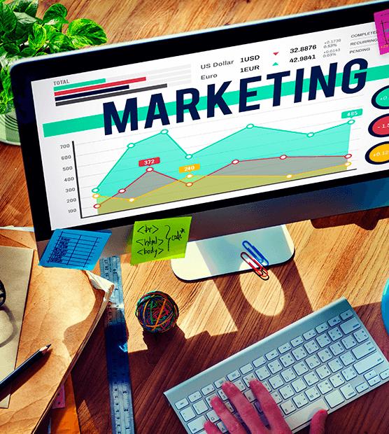 marketing-formação-para-empresas-zonaverde