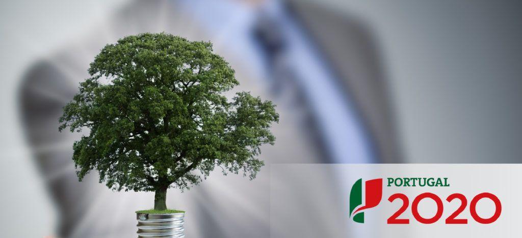 candidaturas-portugal-2020-promocao-eficiencia-energias-renovaveis-zonaverde-blog